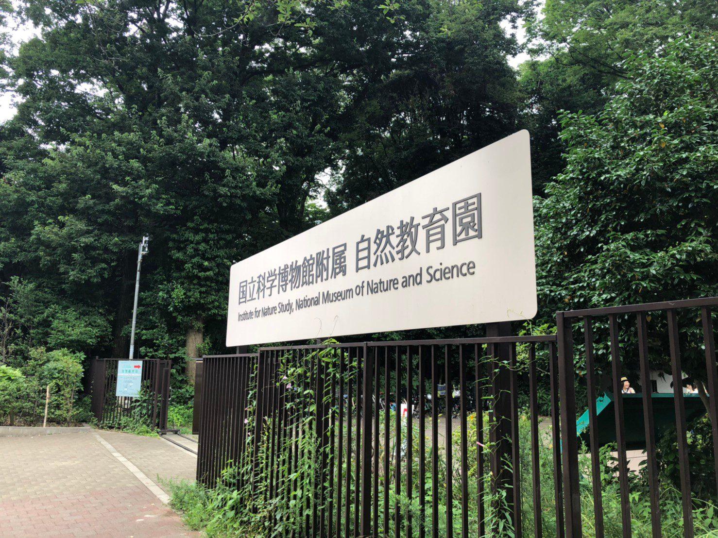 自然教育園_190902_0011